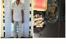 Miliki puluhan paket ganja pria tua ini ditangkap polisi Pangkalan Brandan Langkat