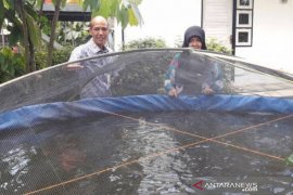 Pertamina alokasikan dana bantu pembudidaya ikan Kadaman