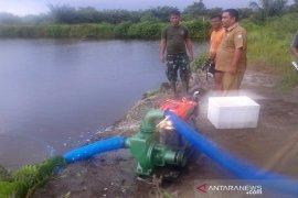 DKP Abdya aktifkan lima hektare tambak ikan payau