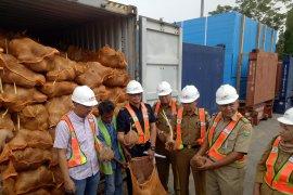 Eksportir rugi milyaran rupiah akibat  Thailand tolak kelapa sumsel
