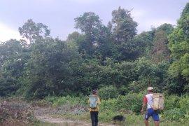 WNI di perbatasan miliki KTP Malaysia karena kebutuhan ekonomi