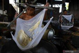 Menteri LHK libatkan ahli riset buktikan isu dioksin pada telur ayam