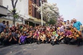 Wali Kota Risma ajak kepala OPD keliling Kota Surabaya lihat bunga Tabebuya