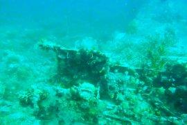 Bangkai pesawat Jepang ditemukan di Teluk Wondama, Papua Barat