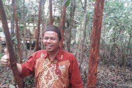 Pelaku UMKM Bangka Tengah Kembangkan Objek Wisata Lada Edukasi