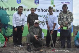Pemprov Babel bersama PLN hijaukan kawasan wisata Biodiversity Sungai Upang
