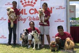 UB Malang berupaya tingkatkan edukasi kesehatan hewan