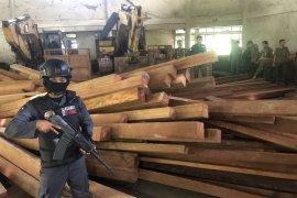 KLHK amankan ribuan kubik kayu ilegal Rp6 miliar