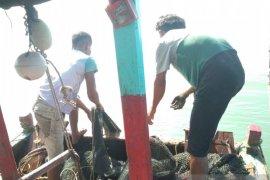 Nelayan Mukomuko ikuti praktek penggunaan alat tangkap ikan di Semarang