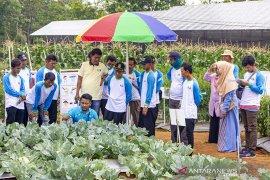 Upaya Penguatan Teknologi Pertanian