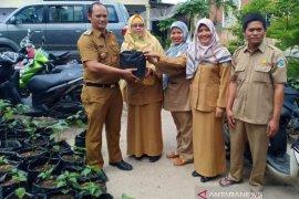 Pemprov Bangka Belitung bagikan bibit cabai tekan inflasi