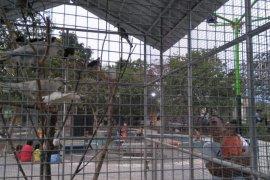 Pemerintah Kota Mataram usulkan RTH Pagutan jadi hutan kota