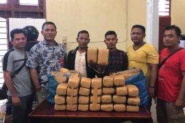 Polres Langkat gagalkan pengiriman 28 kg ganja dari Aceh tujuan Bengkulu
