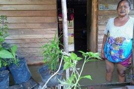 Banjir Desa Bukit Segoler mulai surut