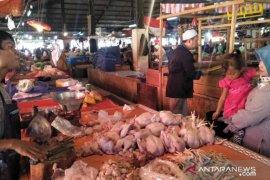 Harga ayam potong di pasar Cianjur berangsur normal