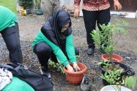 PKK Kota Binjai tanam pohon di Kampung Literasi Anggrek