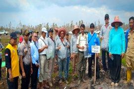 Ahli IPB ambil sampel lahan di  PT TAL dan PT ABS yang terbakar