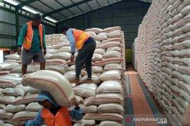 Serapan Bulog terhadap beras petani Cirebon lampaui target