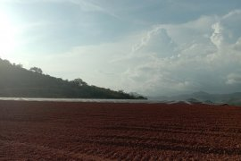 PT MDKA target eksplorasi tambang emas di Gorontalo selesai 2020