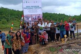 PT LAJ berikan pelatihan budi daya pertanian terpadu petani lokal Tebo