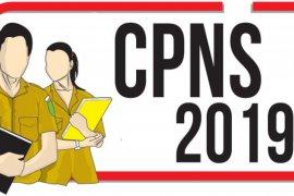 352 pelamar  CPNS Kota Jambi gugur karena berkas tidak memenuhi syarat