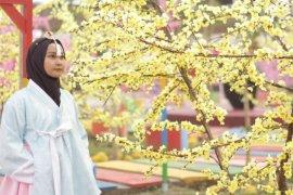 Menikmati wisata Korea ala Kediri