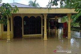 Delapan kecamatan dilanda banjir di Aceh Timur