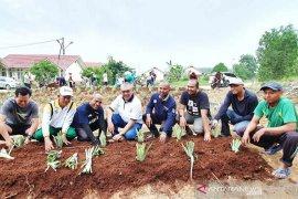 Karyawan dan Warga Riau Kompleks kelola lahan tidur jadi KRPL