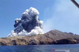 Seorang ibu dan anaknya jadi korban letusan gunung berapi di Selandia Baru
