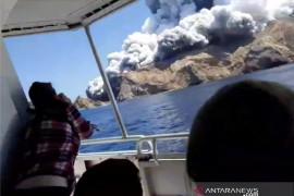 Di Selandia Baru,  Delapan orang hilang setelah letusan gunung berapi