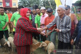 KTNA Labusel salurkan 136 ekor kambing