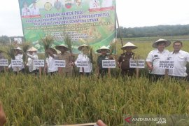 Gubernur Sumut minta petani kurangi penggunaan pupuk kimia