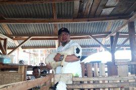 ACT luncurkan lumbung ternak wakaf di Cintabodas Tasikmalaya