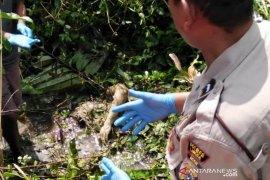 Penemuan mayat di Langsa diduga pelajar