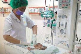 Bayi kembar siam dempet perut dan dada lahir di RSUP Adam Malik