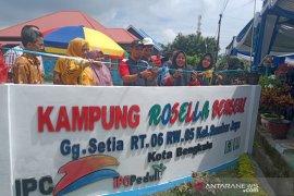 Melihat Kampung Rosella di Sumber Jaya Bengkulu