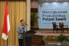 Kanwil DJP Riau optimalkan sumber penerimaan dari sawit