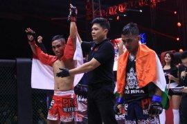 Pemerintah nilai perkembangan MMA Indonesia pesat