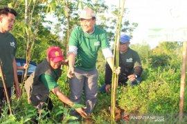 Bupati Bangli ajak masyarakat tanam bambu guna jaga sumber air