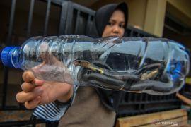 Warga temukan 8 anak kobra di Jalan B Rawa Bambu