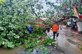 BPBD Jember imbau masyarakat waspadai hujan disertai angin kencang