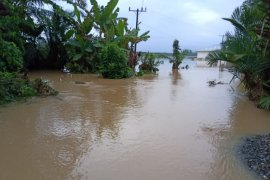 Banjir kembali melanda Sirapit Langkat, 115 hektare sawah terendam