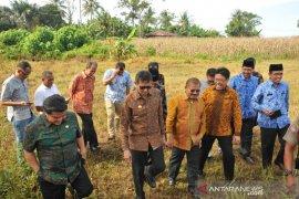 Final, pembukaan Penas KTNA XVI di Padang Pariaman, penutupan di Padang
