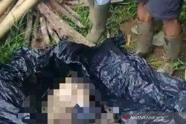 Warga Lahat tewas diduga diserang binatang buas dengan kondisi tubuh terpisah