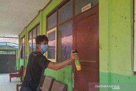 Kawanan ulat bulu menyerbu satu sekolah di Cirebon