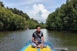 Asyiknya menikmati hutan mangrove Aceh Jaya
