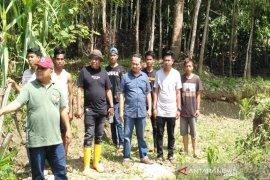 Bersama Ketua komisi II, Kadis Pertanian tinjau persawahan warga yang terdampak banjir