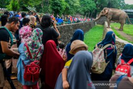 Pengunjung Taman Margasatwa Ragunan capai 92.880 orang