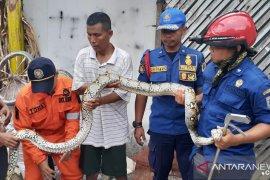 Di tengah banjir, SPBU Shell Daan Mogot terbakar