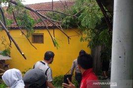 Empat rumah rusak tertimpa pohon tumbang di Garut